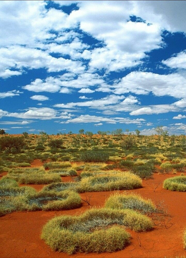 Little Sandy Desert Australia Farmland Sandy Outdoor