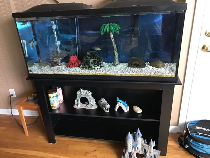 17 best ideas about 55 gallon tank on pinterest 55 for 55 gallon fish tank led light hood