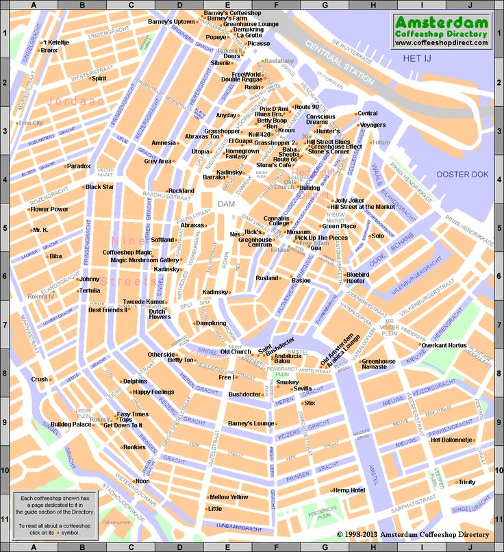 Map Amsterdam Cannabis Weed Hasch Coffeeshops