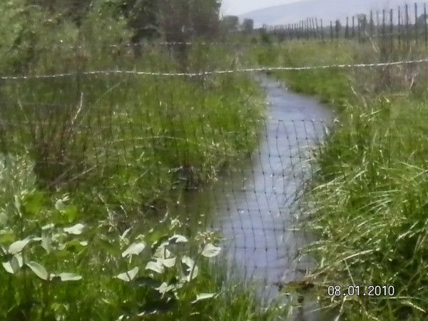Water   flowing  down the  ditch....