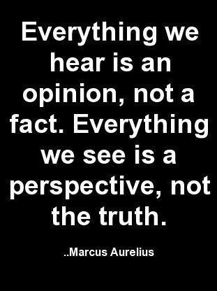 Everything we hear is an opinion, not a fact. Everything we see is a perspective, not the truth. -Marcus Aurelius