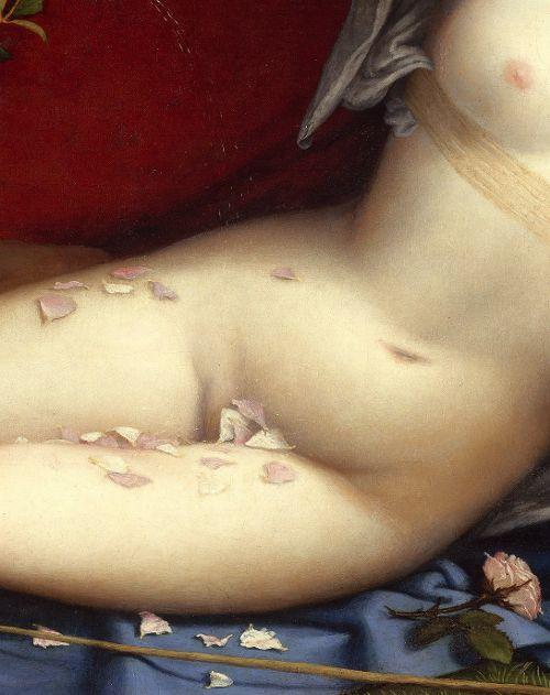 Lorenzo Lotto, Venus and Cupid (Detail), 1520s  (1) Tumblr