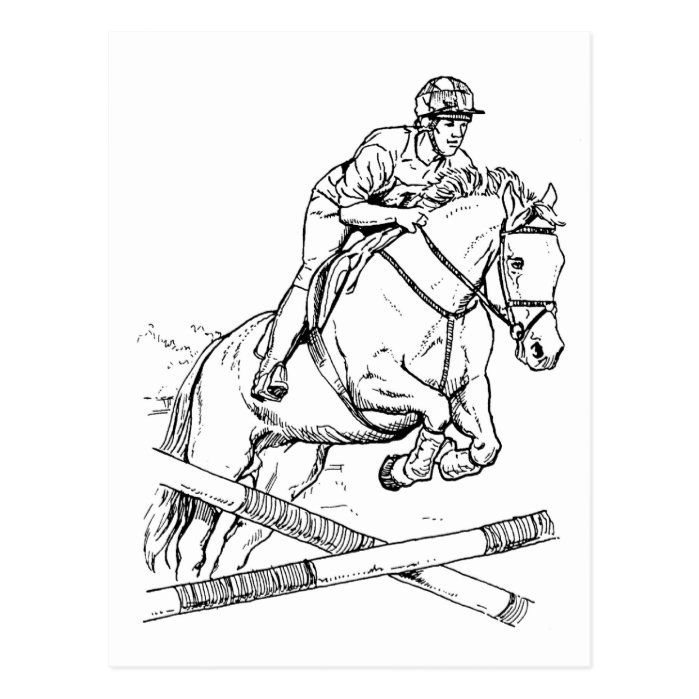Horse Jumping Postcard Zazzle Com In 2020 Easy Horse Drawing Horse Coloring Pages Horse Drawings