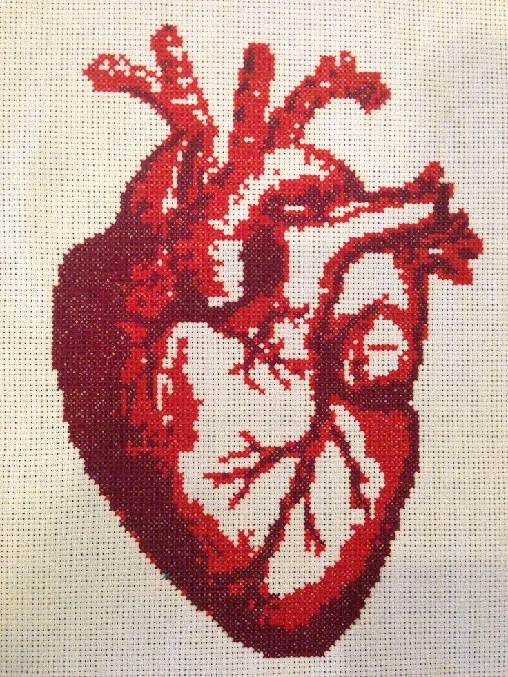 Cross stitch of anatomical heart.