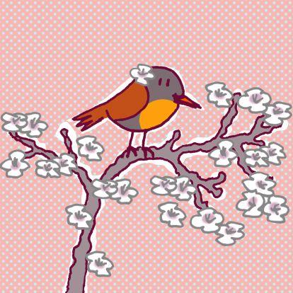 roodborstje met bloem in het haar, eh, in de veren..  Robin with flower.