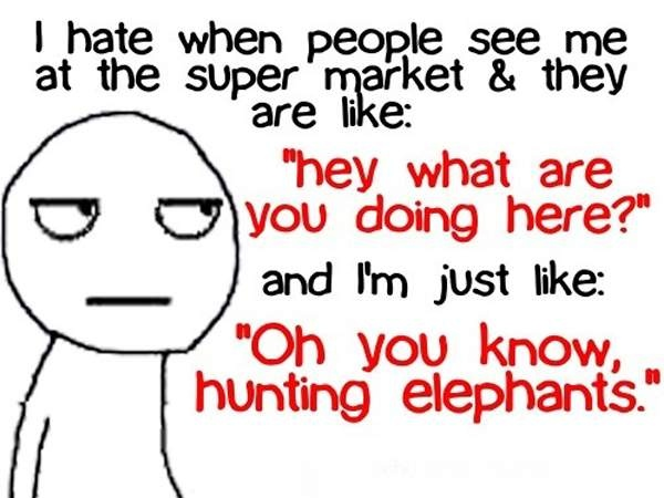 Hahahaha: Laughing, Quotes, Sotrue, Funny Stuff, So True, Funnies, Humor, Funnystuff, Hunt'S Elephants