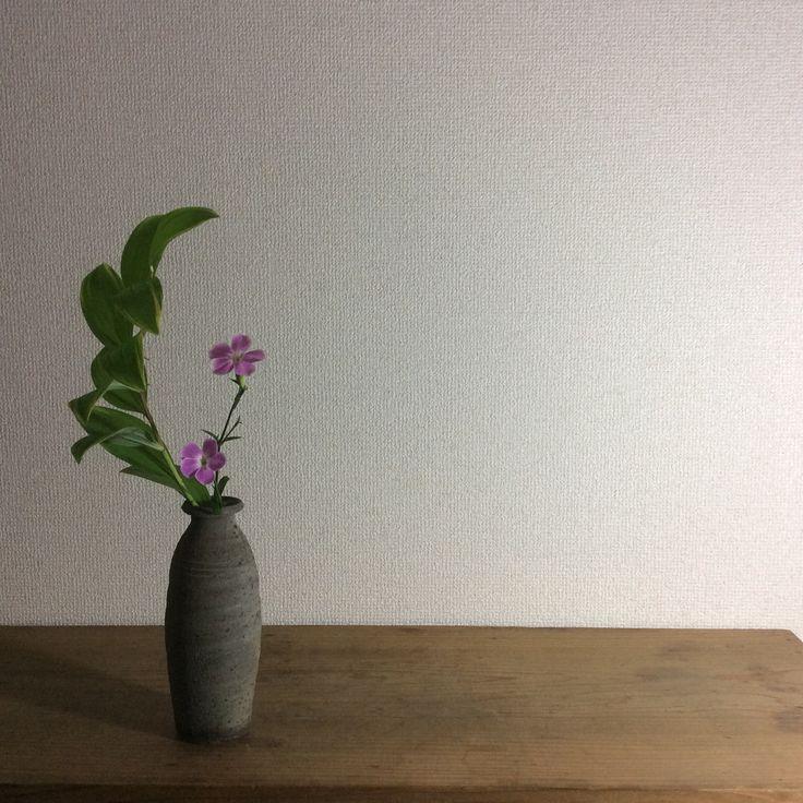 花器:市川孝創作花器 花材:鳴子百合、撫子  Container: Original container by Takashi Ichikawa Material: Solomon's seal and Pink  #花 #いけばな #flower #ikebana #art #市川孝