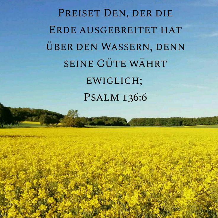 Psalmen Sprüche