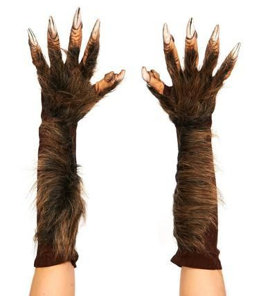 Show your claws and scare everyone this Halloween. These Wolf Gloves are the finishing touch to your werewolf costume. Elbow length gloves feature latex molding and are covered in hair. Caution: this