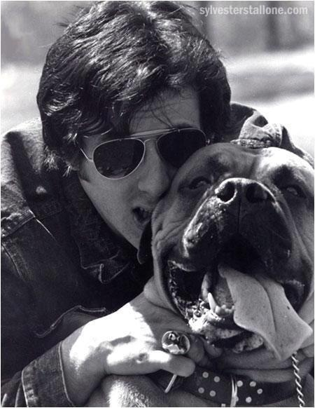 Sly Stallone S Own Dog Butkus