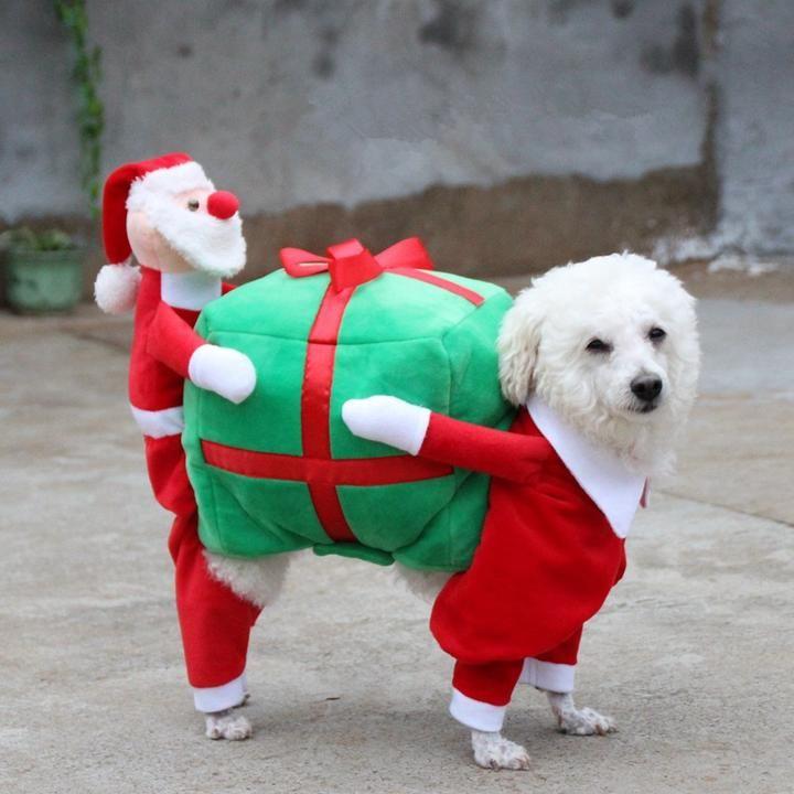 Christmas Dog Funny Santa Claus Costume Christmas Dog Dog