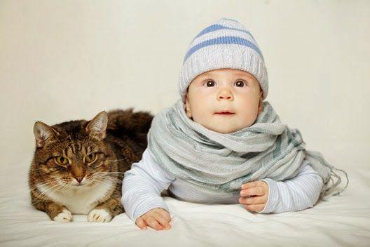 Kociaki i niemowlaki