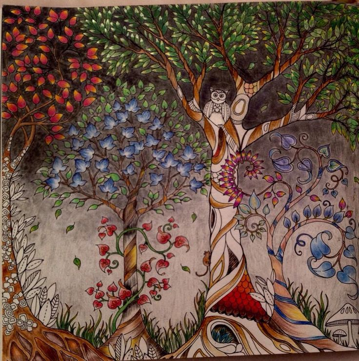 Forest Pictures Joanna Basford Johanna Secret Garden Colored Pencil Tutorial Year 8 Prismacolor Adult Coloring Books Art