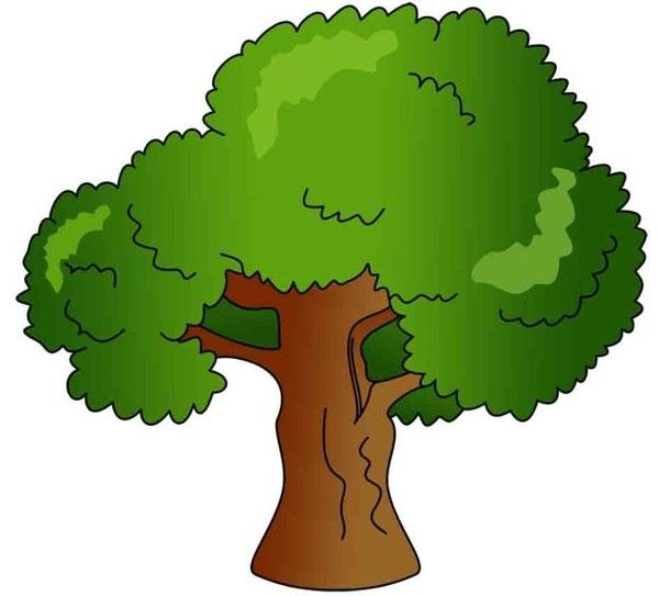 39 best images about clipart plants trees etc on for Cute tree drawing
