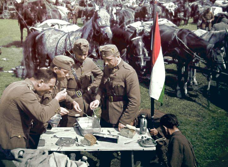 Hungarian officers in Transylvania.