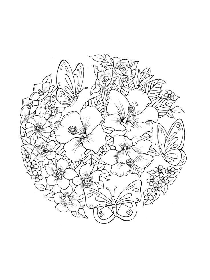 11048 Best Desenhos Para Colorir Images On Pinterest