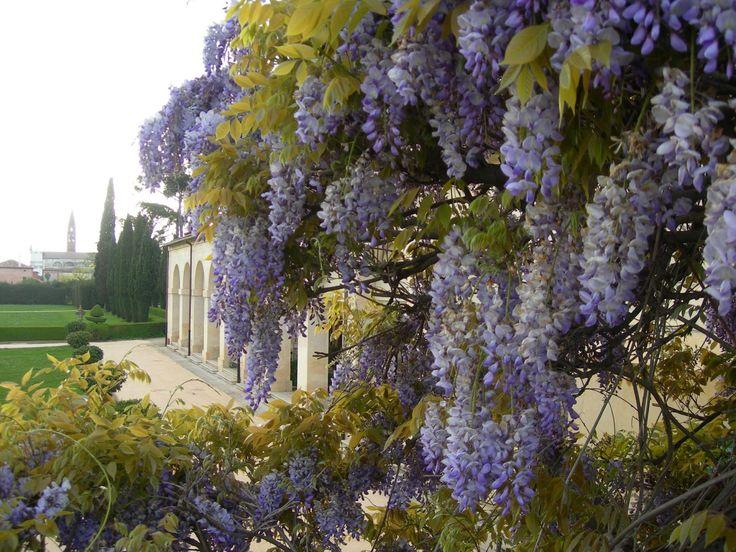 17 migliori idee su splendidi giardini su pinterest - Giardini decorati ...