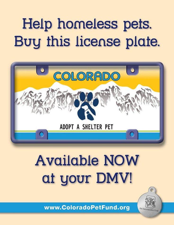 Hale pet door coupons