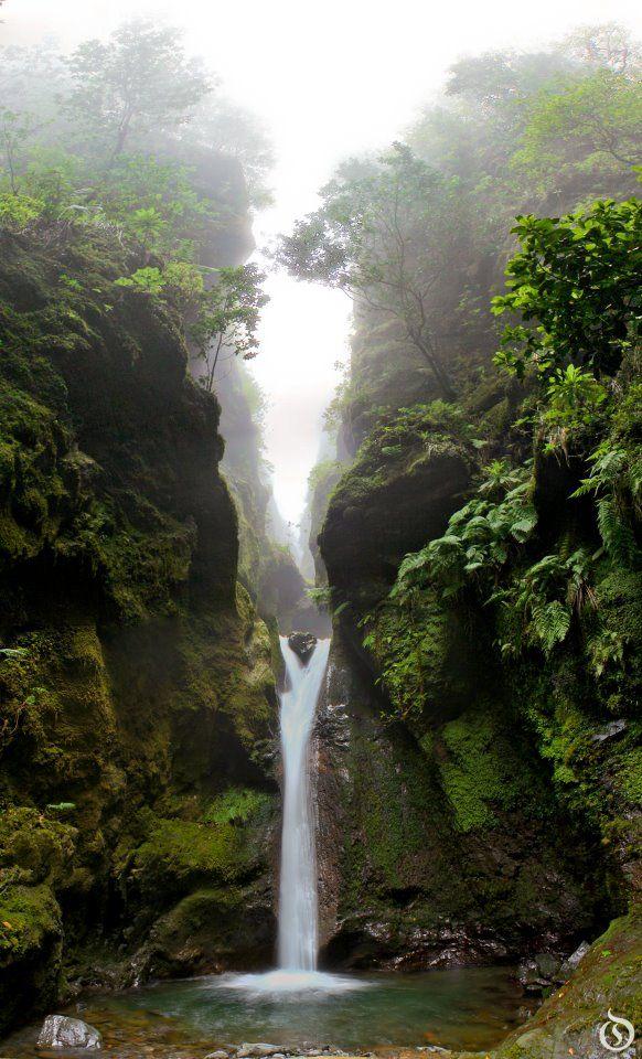 Caldeiro verde, Madeira, Portugal