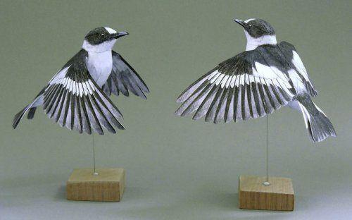 Невероятно реалистичные бумажные птицы Йохана Шерфта
