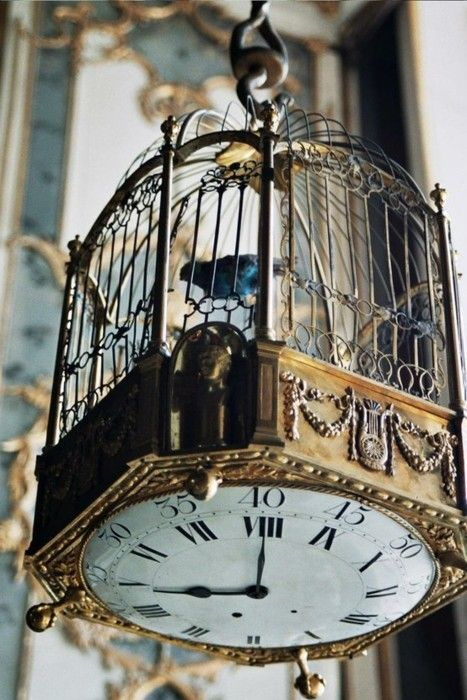 this is incredible! a vintage bird cage decorated with a clock placed underneath, such a cool interior decoration.