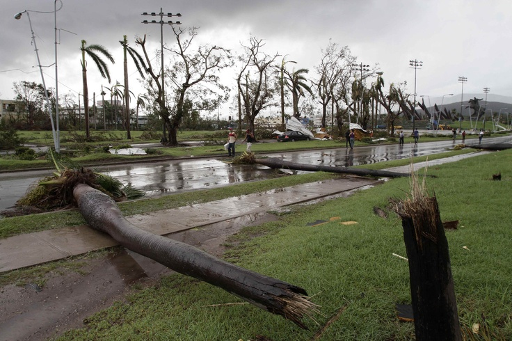 Fallen palm trees lie on a road after the hurricane Sandy in Santiago de Cuba, Cuba,