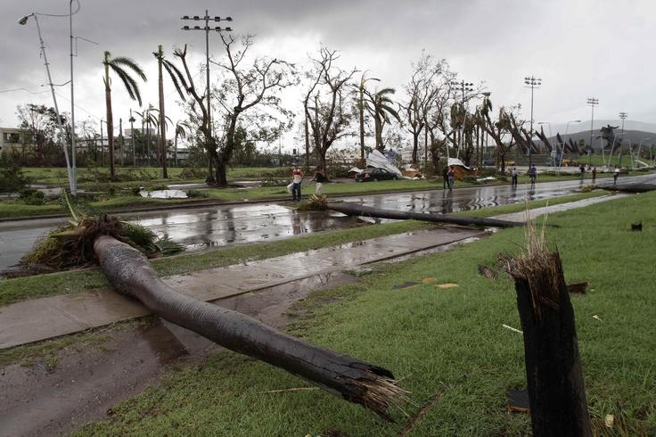 Fallen palm trees lie on a road after the hurricane Sandy in Santiago de Cuba, Cuba, Thursday Oct. 25, 2012.