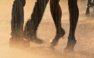 la vie est une danse...