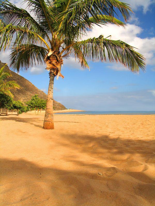 golden beach Teneriffa. Atlantic Ocean