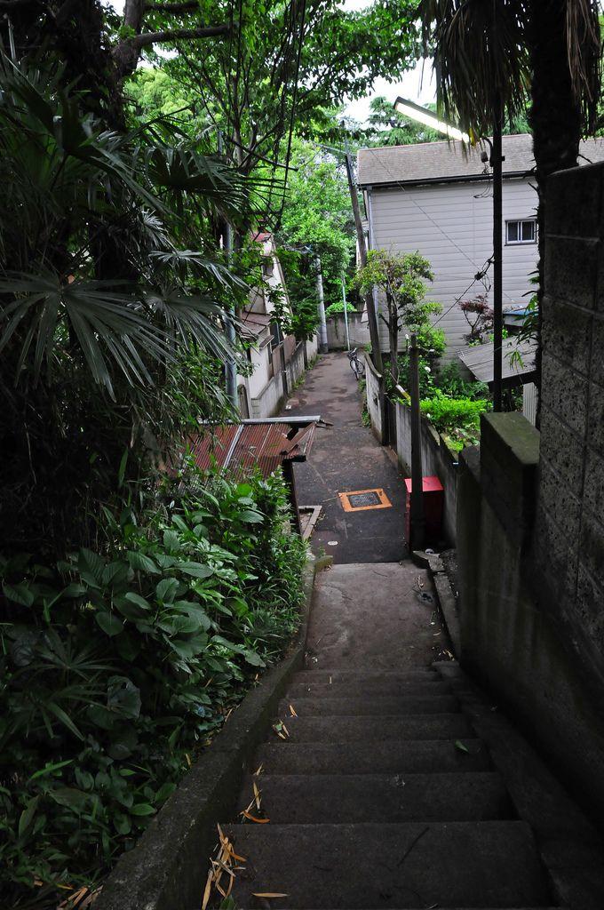 玉林寺裏路地