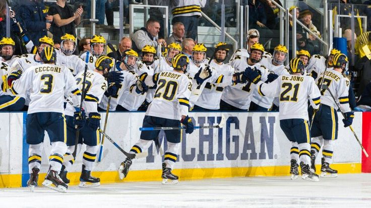 MICHIGAN WOLVERINES HOCKEY