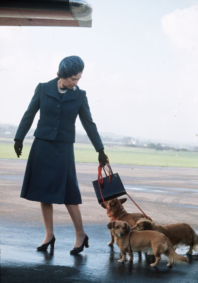 Queen Elizabeth ll arrives at Aberdeen Airport with her corgis to start her holidays in Balmoral, Scotland in 1974