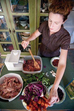 Barbara Laino Dog Food Recipes