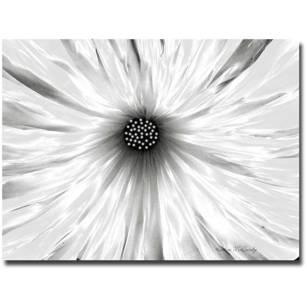 24 best prints images on pinterest abstract paintings abstract kathie mccurdy white garden floral canvas art 113 liked on polyvore mightylinksfo