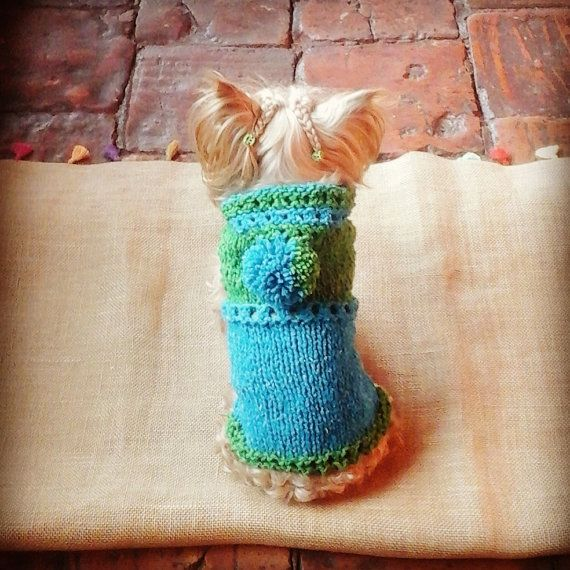 Hand-knitted Dog Sweater / 100% Pure Wool /Blue and by CasaLunaCo