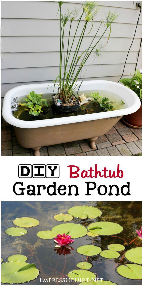 Turn an old claw foot bathtub into a fabulour little container garden pond with…