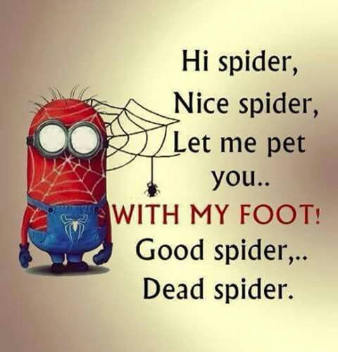 。◕‿◕。 Hi spider, Nice spider, Let me pet you... WITH MY FOOT! Good spider... Dead spider. ♍ Ї η Ї Ѻ η ʂ 。◕‿◕。