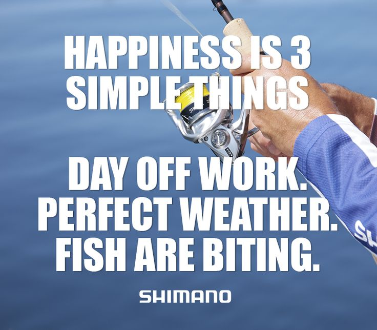 17 best images about fishing memes quotes on pinterest for Funny fishing quotes