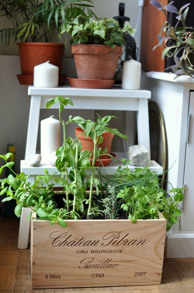 diy transformer une caisse de vin en jardini re aromatiques plants plantes vertes. Black Bedroom Furniture Sets. Home Design Ideas