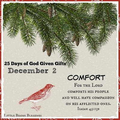 Little Birdie Blessings : 25 Days of God Given Gifts ~ Day 2