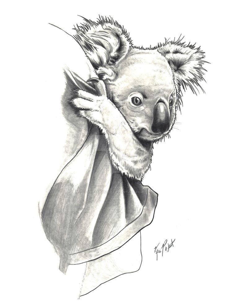 ber 1000 Ideen Zu Koala Tattoo Auf Pinterest Panda