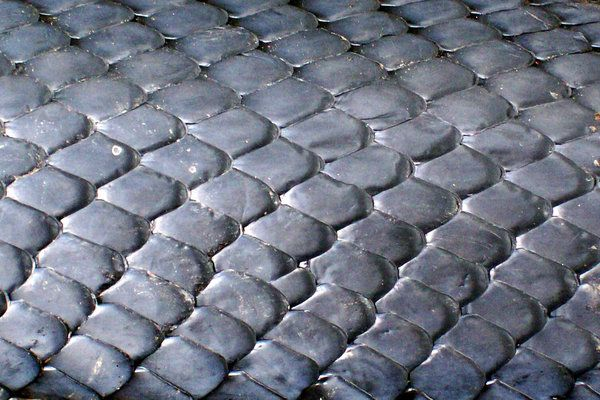 Snake Scales Used As A Basis For Dragon Skin Tactical