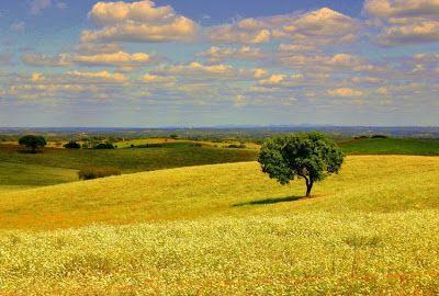 Spe Deus: Tradições de Páscoa no Alentejo