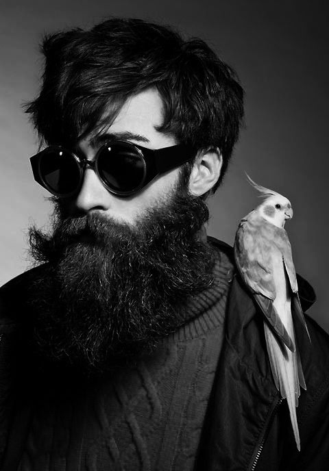 Mustache & Beard                                                                                                                                                                                 Plus