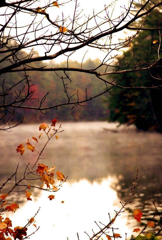 quiet fall...