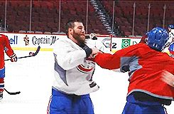 Prusty play fights with the Gallys during practice #4
