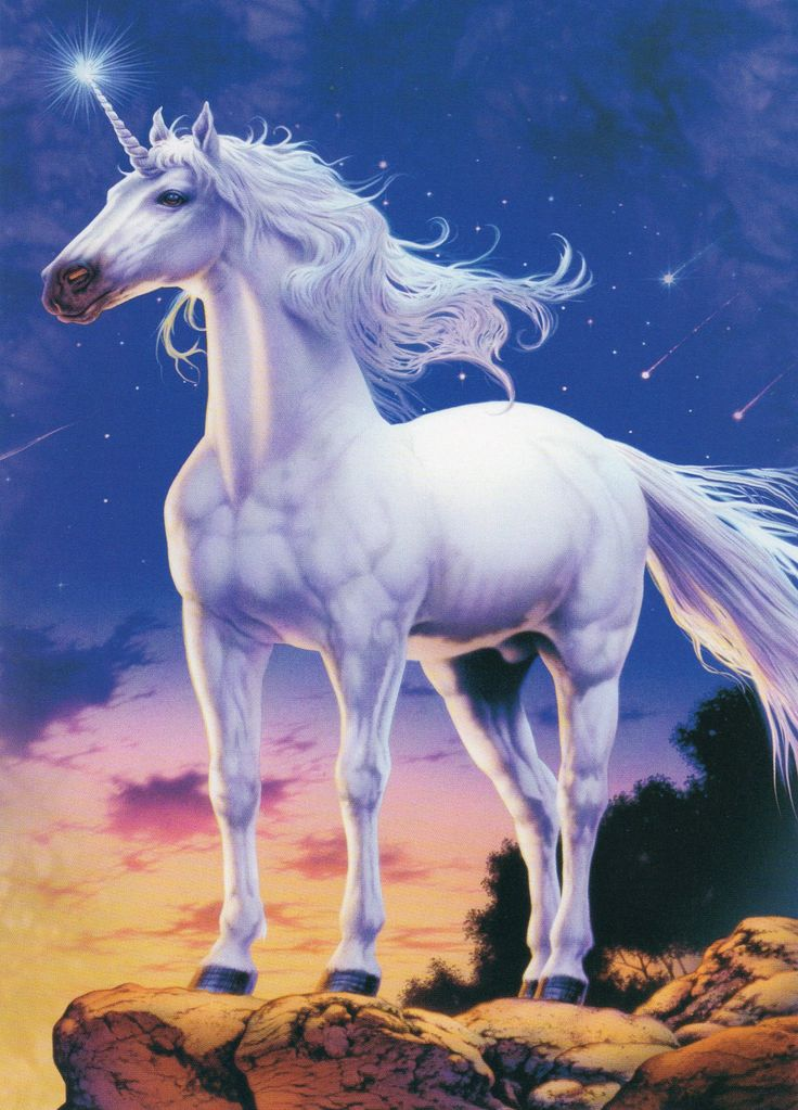 Unicorn and Pegasus | Unicorn Watch | Of Unicorns~and Winged Pegasus~ | Pinterest