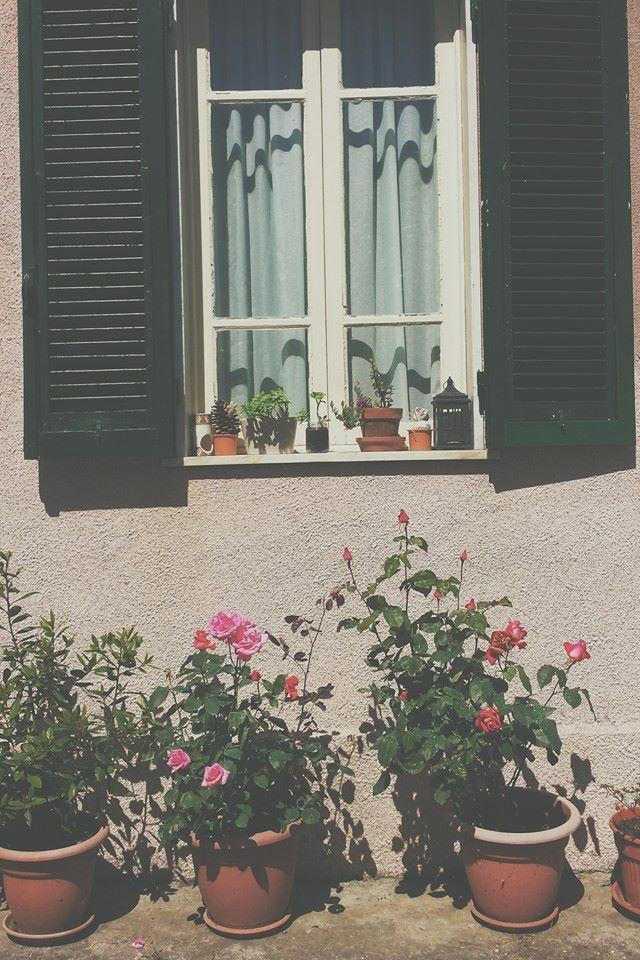 my rustic window