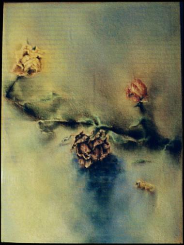 Boris Shumer. Сухие розы. Картон, пастель.