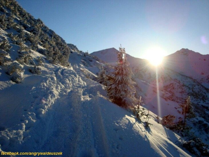 https://flic.kr/p/RZS2uV   Tatra mountains Kasprowy Wierch   Path to Kasprowy Wierch in Tatra mountains Poland   facebook.com/angrywaldeuszek